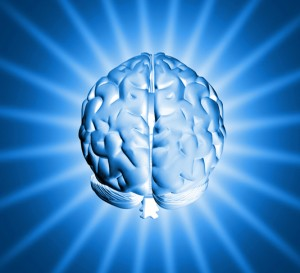 brain-mind