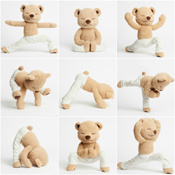 meddy_teddy_collage_small